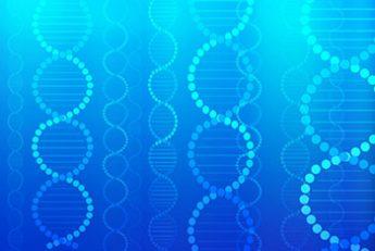 「ゲノム編集」とは(写真はイメージ)