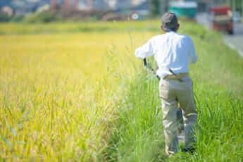 農家イメージ