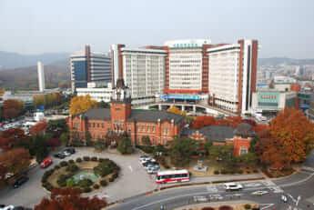 ソウル大学(医学部)