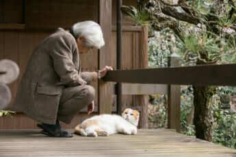 養老孟司さんと愛猫のまる