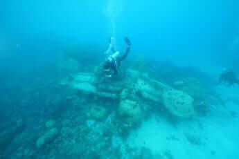 水中考古学者、ミクロネシアの浅瀬でゼロ戦に出会う