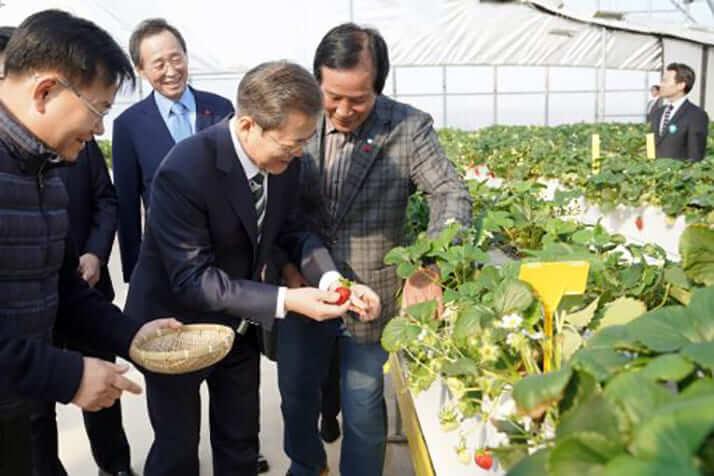 大統領の農園視察